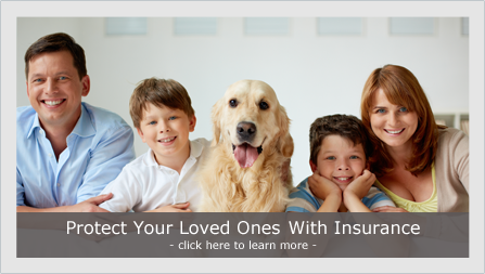 Protect your loved ones with insurance - learn more